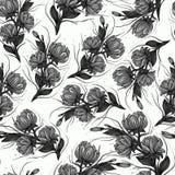 Εκλεκτής ποιότητας μονοχρωματικό μαύρο γραφικό floral άνευ ραφής σχέδιο τέχνης με τα άσπρα τριαντάφυλλα και peonies απομονωμένος  ελεύθερη απεικόνιση δικαιώματος