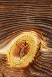 Εκλεκτής ποιότητας ξύλινη σύσταση υποβάθρου Στοκ Εικόνες