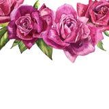 Εκλεκτής ποιότητας πρότυπο τριαντάφυλλων η διακοσμητική εικόνα απεικόνισης πετάγματος ραμφών το κομμάτι εγγράφου της καταπίνει το Στοκ εικόνα με δικαίωμα ελεύθερης χρήσης