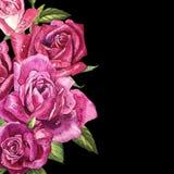 Εκλεκτής ποιότητας πρότυπο τριαντάφυλλων η διακοσμητική εικόνα απεικόνισης πετάγματος ραμφών το κομμάτι εγγράφου της καταπίνει το Στοκ Εικόνες