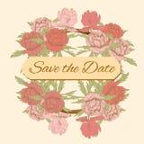 εκλεκτής ποιότητας ρόδινα peonies γαμήλιας πρόσκλησης καρτών ελεύθερη απεικόνιση δικαιώματος
