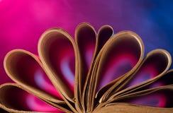 Εκλεκτής ποιότητας σελίδες βιβλίων Στοκ Εικόνες
