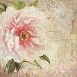 Εκλεκτής ποιότητας Floral απεικόνιση κολάζ - παλαιά τυπωμένη ύλη τέχνης κολάζ ύφους - εκλεκτής ποιότητας τιμολόγιο - Floral και α διανυσματική απεικόνιση