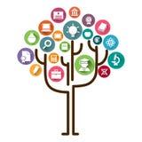 Εκμάθηση έννοιας δέντρων εκπαίδευσης Εικονίδια εκπαίδευσης και διανυσματική απεικόνιση δέντρων ελεύθερη απεικόνιση δικαιώματος