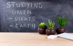 Εκμάθηση για τα πράσινα θέματα στο περιβάλλον τάξεων με το blackb Στοκ Εικόνες