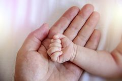Εκμετάλλευση γονέα στα πόδια χεριών του νεογέννητου μωρού στοκ εικόνες