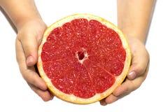 Εκμετάλλευση του παιδιού χεριών ένα κόκκινο γκρέιπφρουτ απομονωμένο στο λευκό υπόβαθρο τρόφιμα έννοιας υγιή Γκρέιπφρουτ εκμετάλλε στοκ φωτογραφίες με δικαίωμα ελεύθερης χρήσης