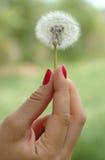 εκμετάλλευση χεριών πικ στοκ εικόνα με δικαίωμα ελεύθερης χρήσης