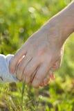 Εκμετάλλευση πατέρων και γιων χέρι-χέρι Στοκ Φωτογραφίες
