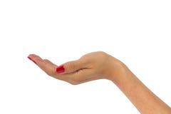 Εκμετάλλευση χεριών γυναίκας τίποτα Στοκ Εικόνες