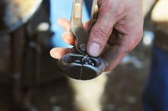 Εκμετάλλευση χεριών σιδηρουργών που χρησιμοποιεί τις παλαιές χρησιμοποιημένες πένσες με το καρφί Στοκ Φωτογραφία
