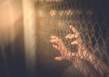 Εκμετάλλευση χεριών στο φράκτη συνδέσεων αλυσίδων, τρύγος Στοκ Φωτογραφίες