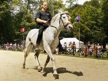 Εκπαίδευση αλόγου σε περιστροφές αλόγων Στοκ εικόνες με δικαίωμα ελεύθερης χρήσης