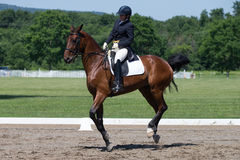 Εκπαίδευση αλόγου σε περιστροφές FEI Prix ST Georges Στοκ φωτογραφία με δικαίωμα ελεύθερης χρήσης