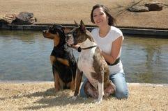 εκπαιδευτής σκυλιών στοκ φωτογραφία με δικαίωμα ελεύθερης χρήσης