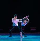 Εκπαιδευτικά μαθήματα de deux-Physique χορευτικού βήματος Στοκ εικόνα με δικαίωμα ελεύθερης χρήσης