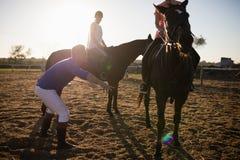 Εκπαιδευτικοί φίλοι εκπαιδευτών στην οδήγηση του αλόγου στη σιταποθήκη Στοκ εικόνα με δικαίωμα ελεύθερης χρήσης