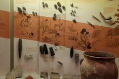 Εκπαιδευτικό έκθεμα διάφορα arrowheads που βρίσκονται μουσείο των περιοχών, του κράτους, Άλμπανυ, Νέα Υόρκη, 2016 Στοκ Φωτογραφίες