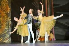 Εκτέλεση χορευτών μπαλέτου στοκ εικόνα