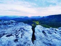 Εκτεθειμένος απότομος βράχος ψαμμίτη επάνω από τη βαθιά misty κοιλάδα στο τέλος του καλοκαιριού Ονειροπόλος διάθεση στοκ εικόνα