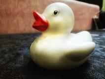 Εκτυφλωτικό λουτρό Ducky ασφάλειας στοκ εικόνα