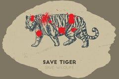 Εκτός από την τίγρη εκτός από την άγρια φύση Στοκ Εικόνες