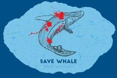 Εκτός από τη φάλαινα εκτός από την άγρια φύση Στοκ εικόνες με δικαίωμα ελεύθερης χρήσης