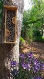 Εκτός από τις μέλισσες Φύτευση των λουλουδιών για τους βιότοπους γονιμοποίησης και σπιτιών μελισσών για τη διαχείμαση στοκ εικόνα με δικαίωμα ελεύθερης χρήσης