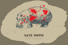 Εκτός από το hippo εκτός από την άγρια φύση Στοκ Φωτογραφίες