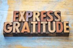 Εκφράστε την περίληψη λέξης ευγνωμοσύνης στον ξύλινο τύπο στοκ εικόνες
