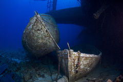 εκφράστε το Σάλεμ τραγωδία Ερυθρά Θάλασσα στοκ εικόνες