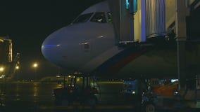 Εκφόρτωση των αποσκευών από το αεροπλάνο απόθεμα βίντεο