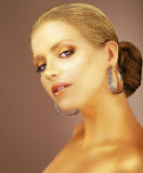 εκλέπτυνση Πορτρέτο της ευγενούς αριστοκρατικής κυρίας με τα σκουλαρίκια Στοκ φωτογραφία με δικαίωμα ελεύθερης χρήσης