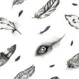 Εκλεκτής ποιότητας άνευ ραφής γραφικό σχέδιο με τα hand-drawn φτερά Flyi Στοκ φωτογραφίες με δικαίωμα ελεύθερης χρήσης