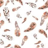 Εκλεκτής ποιότητας άνευ ραφής σχέδιο των μπεζ και καφετιών φτερών σε ένα λευκό Στοκ Φωτογραφία
