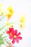 Εκλεκτής ποιότητας έγγραφο λουλουδιών Στοκ εικόνες με δικαίωμα ελεύθερης χρήσης