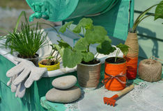 Εκλεκτής ποιότητας ακόμα ζωή με τον εξοπλισμό γερανιών, κρεμμυδιών και κήπων Στοκ εικόνες με δικαίωμα ελεύθερης χρήσης