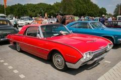 1962 εκλεκτής ποιότητας αυτοκίνητο της Ford Thunderbird Hardtop Στοκ εικόνες με δικαίωμα ελεύθερης χρήσης
