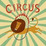 Εκλεκτής ποιότητας αφίσα απόδοσης τσίρκων Στοκ φωτογραφία με δικαίωμα ελεύθερης χρήσης