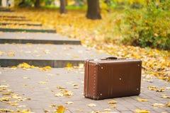 Εκλεκτής ποιότητας βαλίτσα στο πάρκο φθινοπώρου Στοκ εικόνα με δικαίωμα ελεύθερης χρήσης