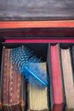 Εκλεκτής ποιότητας βιβλία και φτερό Στοκ Εικόνες