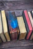 Εκλεκτής ποιότητας βιβλία και φτερό Στοκ φωτογραφία με δικαίωμα ελεύθερης χρήσης