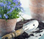 Εκλεκτής ποιότητας εργαλεία κήπων Στοκ εικόνα με δικαίωμα ελεύθερης χρήσης