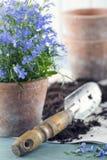 Εκλεκτής ποιότητας εργαλεία κήπων Στοκ εικόνες με δικαίωμα ελεύθερης χρήσης