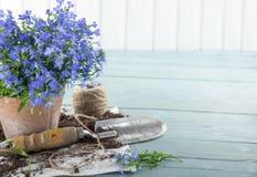 Εκλεκτής ποιότητας εργαλεία κήπων Στοκ Φωτογραφία