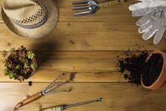 Εκλεκτής ποιότητας εργαλεία κηπουρικής στοκ εικόνα