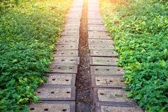 εκλεκτής ποιότητας διάβαση πεζών ύφους φωτογραφιών πάρκων εικόνας Στοκ εικόνες με δικαίωμα ελεύθερης χρήσης
