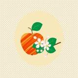 Εκλεκτής ποιότητας διάνυσμα ανθών σχεδίων φρούτων μήλων φύσης Στοκ εικόνα με δικαίωμα ελεύθερης χρήσης