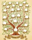 Εκλεκτής ποιότητας διάνυσμα προτύπων οικογενειακών δέντρων Στοκ φωτογραφία με δικαίωμα ελεύθερης χρήσης
