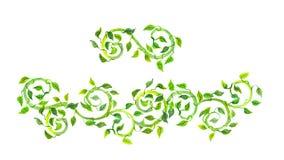 Εκλεκτής ποιότητας διαιρέτης διαχωριστών με τους πράσινους κυλίνδρους και τα φύλλα watercolor στοκ εικόνα